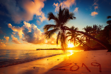Happy New Year 2019. Sunrise over tropical beach in Punta Cana, Dominican Republic