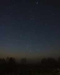 The rising constellation of Orion over the field with the fog of starry night near the forest