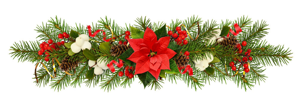 Evergreen twigs of Christmas tree, poinsettia flower, berries and holiday decorations in a garland