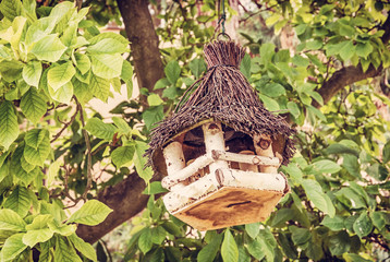 Wooden bird house hanging on green tree
