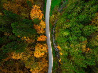 Top down drone view on winding road trough autumn forest