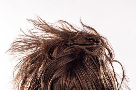 Closeup of a morning bed head with a natural messy hair from behind of young man in his 20s, isolated on white - Concept of hangover, insomnia, sleeplessness, confident appearance or casual hipster