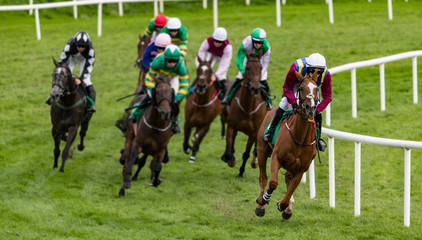 Lead race horse and jockey galloping on the final turn of the race