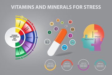 Infographic vector showing capsule of the vitamins and minerals for stress. The human head divided into four parts (stress, anxiety, fatigue, depression) is on the right.