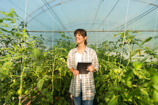 Female agronomist supervising in greenhouse