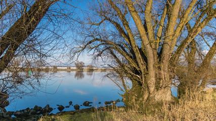 Beautiful view near Steinkirchen-Danube-Bavaria-Germany
