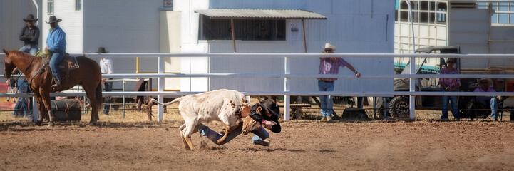Calf Roping Competition At Country Rodeo