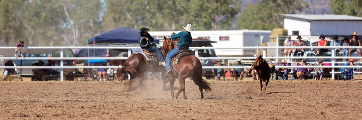 Team Calf Roping Competition At Country Rodeo