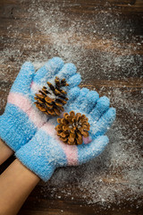 Hands in gloves holding pinecone