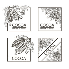 collection of frames with cocoa beans, branch and leaves