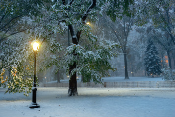 Fond de hotte en verre imprimé New York City Winter landscape in Central Park. New York City. USA