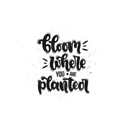 Vector hand drawn illustration. Lettering phrases Bloom where you are planted. Idea for poster, postcard.