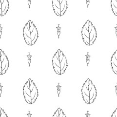Hand drawn vector seamless floral pattern Mint leaf peppermint ink sketh isolated on white background, spicy herb kitchen texture, Doodle cooking ingredient for design package tea, wallpaper, cosmetic