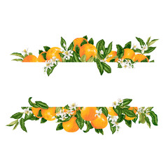 Template frame decprative vector element with citrus flowers and fruits