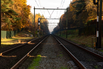 Dutch Railroad in Autumn 06