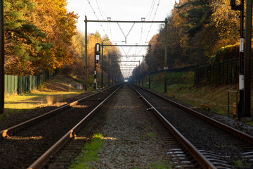 Dutch Railroad in Autumn