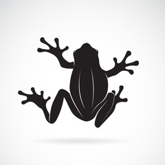 Vector of frog design on white background. Amphibian. Animal. Frog Icon. Easy editable layered vector illustration.