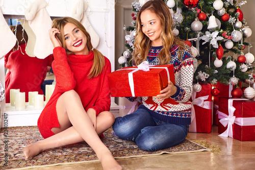 Portrait Of Two Beautiful Blond Women Girlsmodels Sitting Near