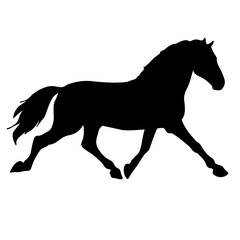 rearing up horse fine vector silhouette and outline - graceful black stallions