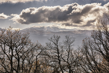 Bare tree branches in the mountains against the backdrop of storm clouds covering the sun at a cold season time.