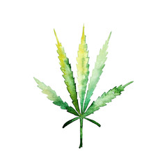 Green cannabis leaf for your design projects. Watercolor illustration