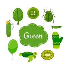 Learn the primary colors. Green. Different objects in green color. Educational material for children and toddlers.