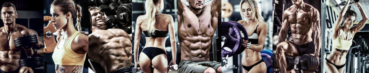 concept gym bodybuilding