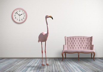 Pink flamingo in home room
