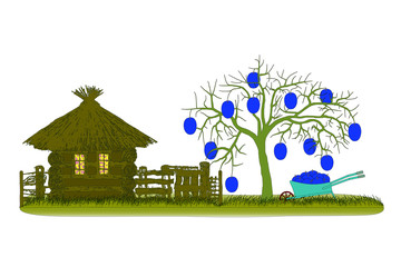 Plums harvest. Plums tree with wheelbarrow.Vector illustration.