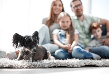 background image of happy family with pet