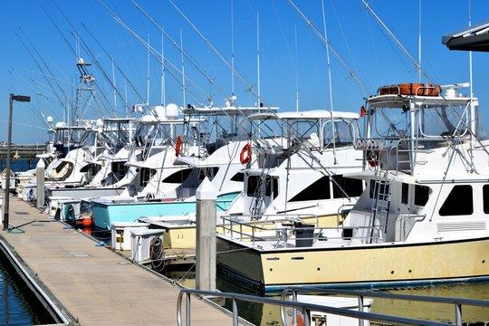 Sport fishing boats moored at marina dock St. Augustine, Florida