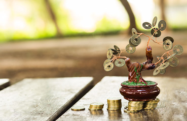 Columns of coins with money tree.