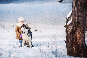 Funny little girl hugging her big Malamute dog in winter in the forest.