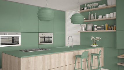 Modern green and wooden kitchen with shelves and cabinets, island with stools. Contemporary living room, minimalist architecture interior design