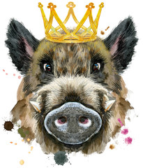 Watercolor portrait of wild boar with gold crown