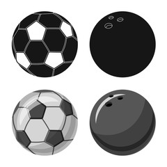 Vector illustration of sport and ball sign. Set of sport and athletic vector icon for stock.