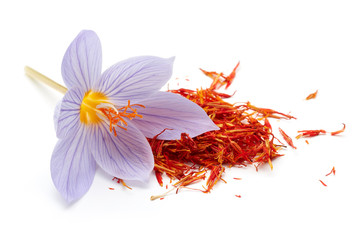 Saffron with crocus flower