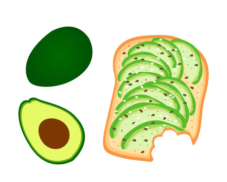 Avocado toast. Sliced avocado on toast bread with spices. Delicious avocado sandwich with sesame seeds, seasoning and dill. Vector illustration.