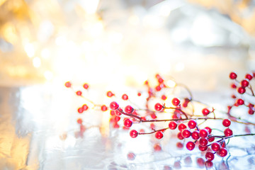 Christmas red berries on a branch