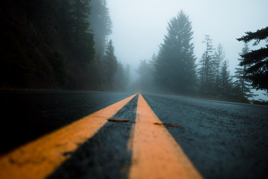 A remote road leading though the dense forest fog of the Olympic National Park in Washington state on a cool morning