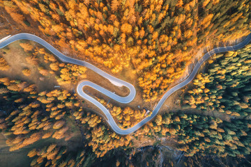 Aerial view of the winding road in autumn forest at sunset in mountains. Top view of perfect asphalt roadway and orange trees. Highway through the woodland in fall. Trip in europe. Travel and nature