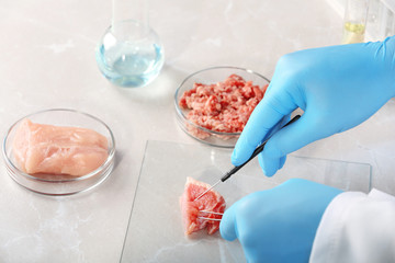 Scientist inspecting meat sample on table, closeup. Food quality control