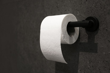 Toilet paper holder with roll mounted on dark wall