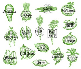 Exotic vegetable silhouettes with lettering