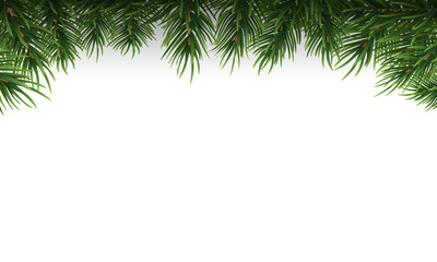 Green Christmas tree branches border on a white background. Vector Illustration.