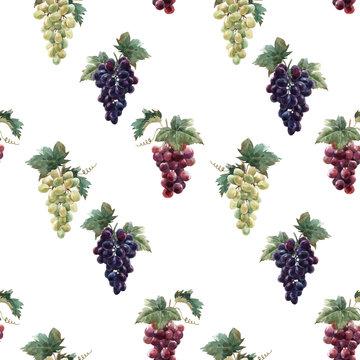Watercolor grape vector pattern
