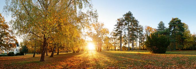 Beautiful park garden in atumn. Fall panorama in park at sunrise in Slovakia