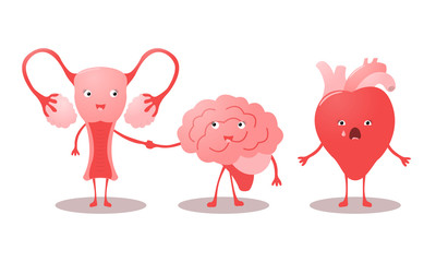 Funny characters uterus, brain and heart. Vector illustration.