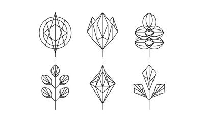Geometrical leaves set, monochrome polygonal plants vector Illustration on a white background