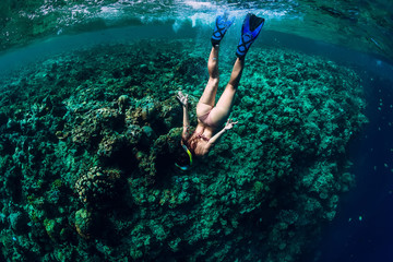 Woman free diver dive in the tropical ocean Wall mural